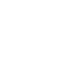 logo erkend geboortefotograaf